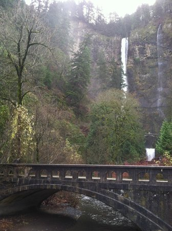 Cataratas Multnomah: View from the parking lot