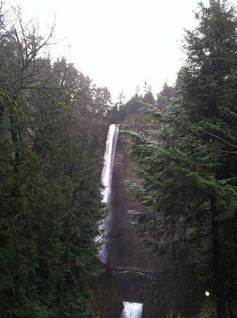 Cataratas Multnomah: The top of the falls