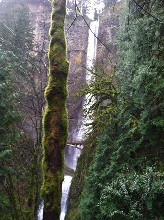 Multnomah Falls: The falls