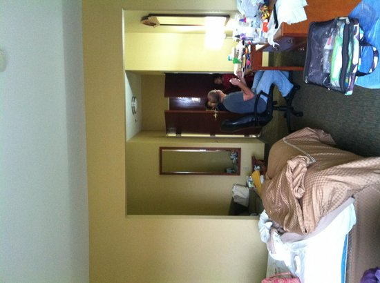 Comfort Suites Lake Ray Hubbard: Large room with 2 double beds, sofa, desk, coffee table