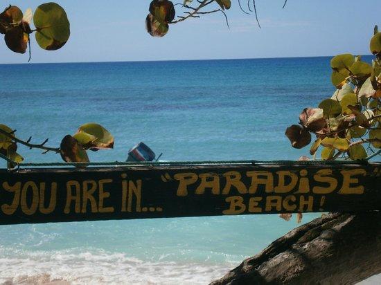 La Romana Province, República Dominicana: La spiaggia del Paradiso!