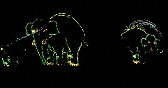 Phoenix Zoo: Lights