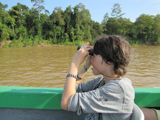 The Last Frontier Boutique Resort: Wildlife spotting during the boat trip.