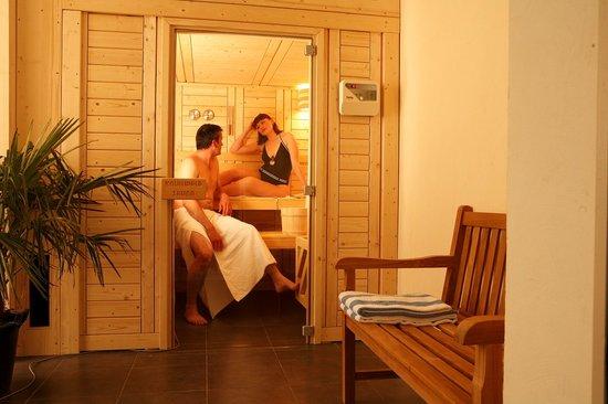 Hôtel L'Albatros : sauna
