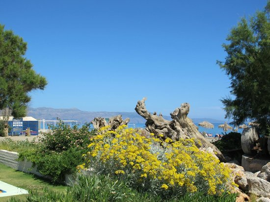 Family Life Caldera Beach by Atlantica: garden