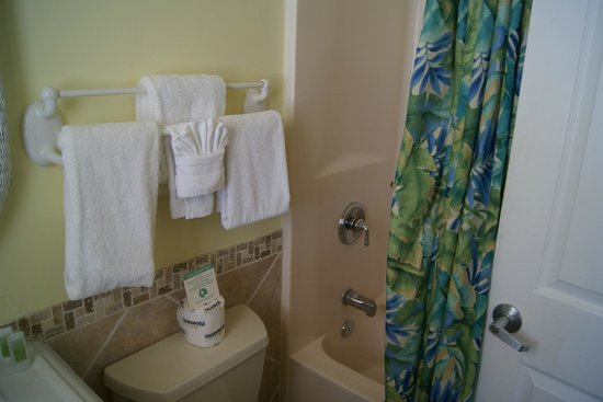 Lemon Tree Inn: The bathroom II