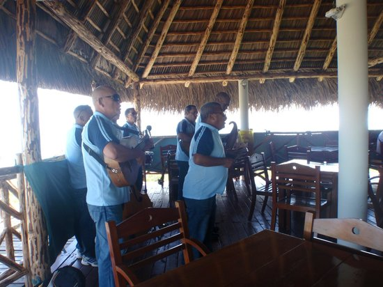 Hotel Pelicano: staff playing live during meals