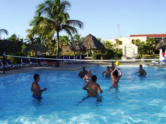 Sol Pelicano: pool