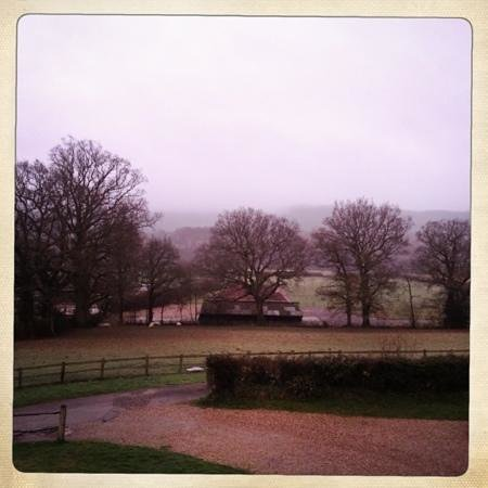 Colliers Farm B&B: View from the upstairs room