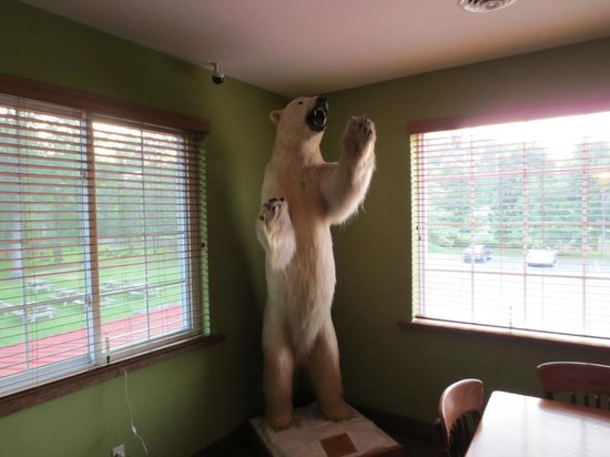 Woods Creek Grill: Taxidermy One