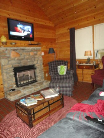 Mountain Springs Cabins: Living Room