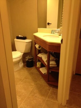 Hampton Inn Albany - Wolf Road (Airport): very nice use of space