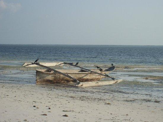 Dongwe Club: trimarano con la bassa marea
