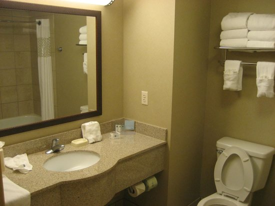 Hampton Inn & Suites Boise Downtown: King whirlpool studio