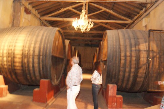 Club Tapiz Hotel: Tapiz wines, resting on oak barrels...