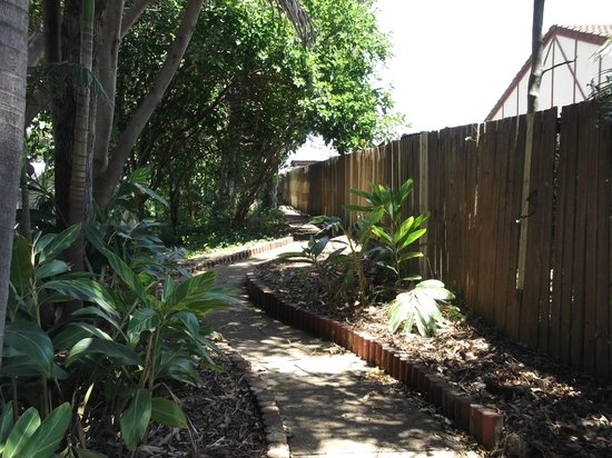 Ashmore Palms Holiday Village: Rainforest walk around the perimeter of the park