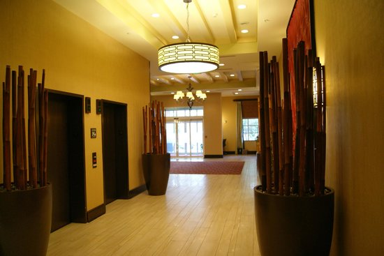 Hampton Inn and Suites St. Petersburg Downtown: The elevators