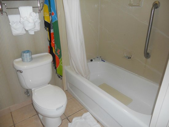 "Hampton Inn and Suites St. Petersburg Downtown : The bathroom, and ops, my ""Rio's canga"""