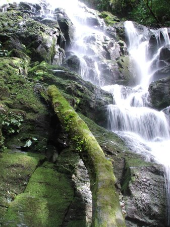 Rinconcito Lodge: Waterfall on hiking/horseback tour