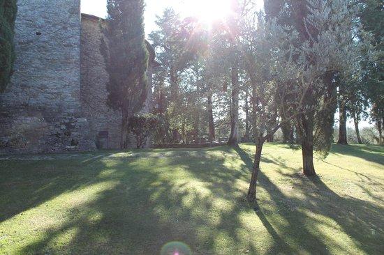 Borgo di Bastia Creti: dintorni