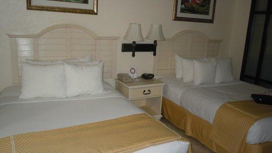 Comfort Suites Paradise Island: Double beds