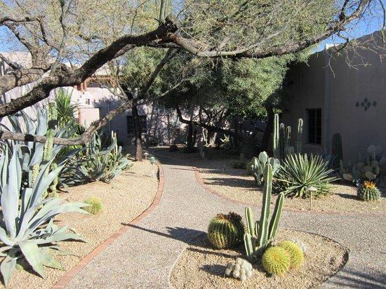 Lodge on the Desert - Tucson