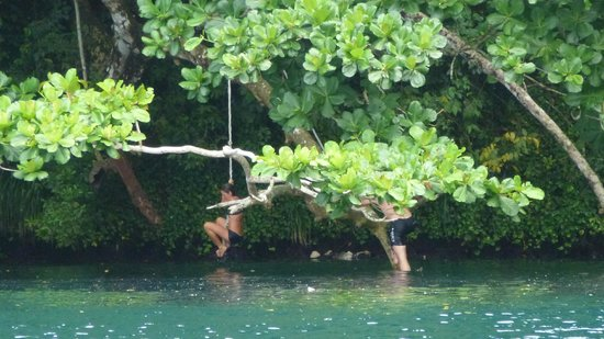 Moon San Villa: Me and my friends climbing the rope on the other side of the Lagoon.