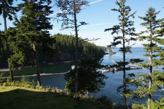 Scotia Bay Bed and Breakfast: Vue sur la baie