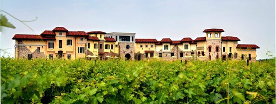 Colaneri Estate Winery: Building from the vineyard