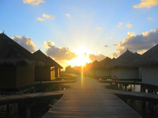 Cinnamon Dhonveli Maldives: восторг