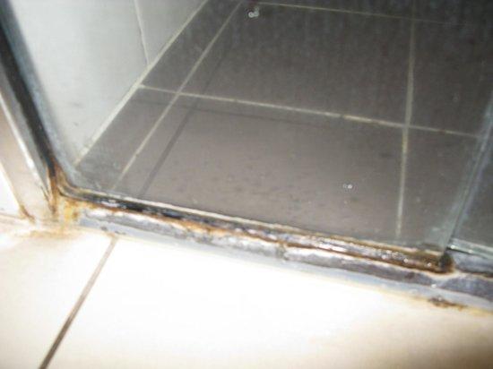 at Marina Shores: mouldy shower recess