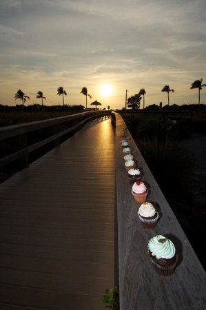 Simply Cupcakes of Marco Island: Cupcake photo shoot at Residents Beach