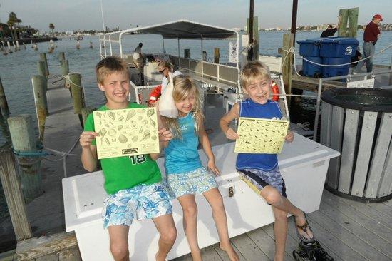 Saint Pete Beach, FL: Shells