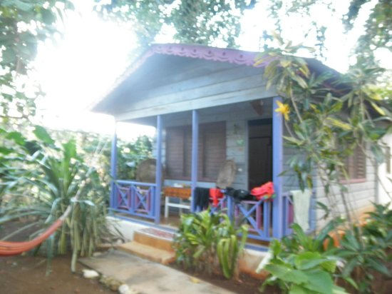 Banana's Garden Bed & Breakfast : coconut cottage