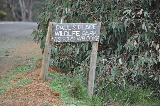 Paul's Place Wildlife Sanctuary: Paul's Place