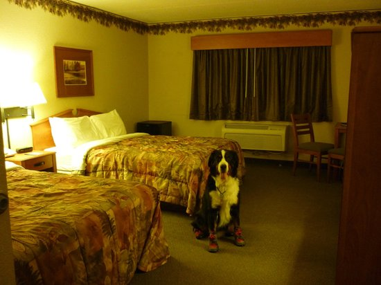 AmericInn Lodge & Suites Wabasha : ミニ冷蔵庫があります。