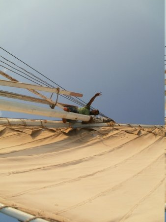 Villa Lostris Holiday Apartments : madness on the mast!