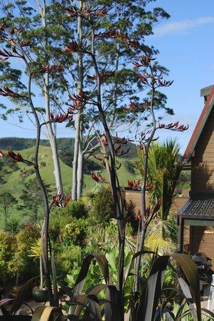 Coastal Chalet Suites: Garden