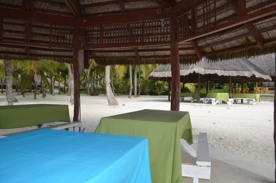 Bohol Beach Club: hotel ground