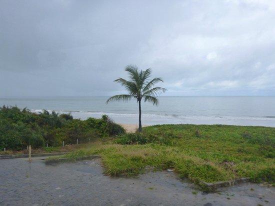 Itacimirim Beach
