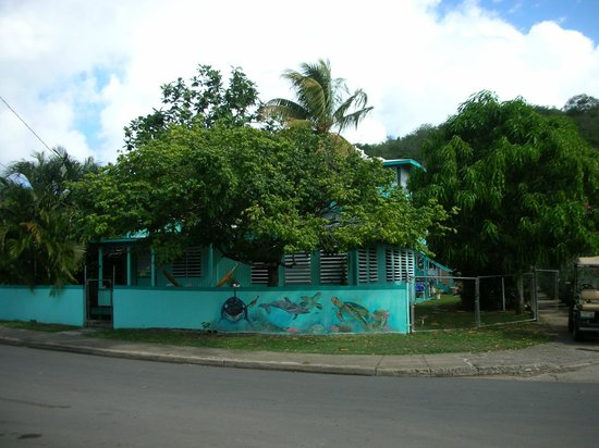 Casita Tropical: The Front View