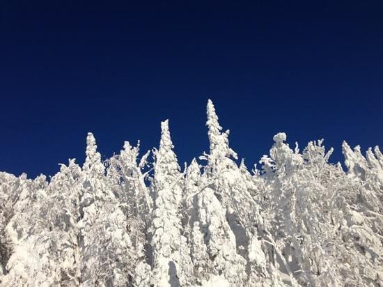 Le Sommet des Neiges : le ciel bleu