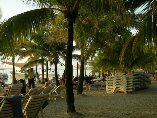 Henry Morgan Beach Resort: La plage