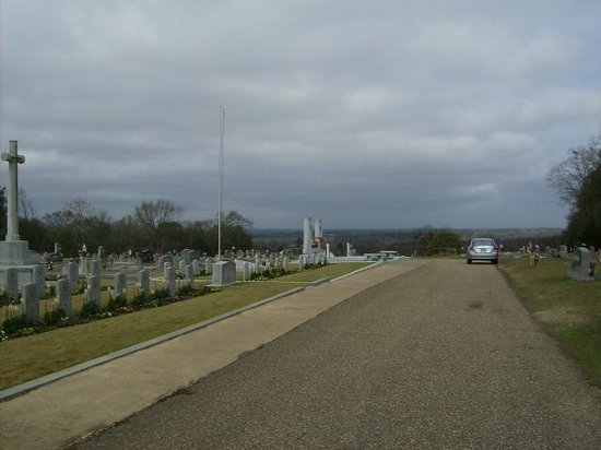 Hank Williams Memorial - Oakwood Annex Cemetery: View as you drive past the soldiers from the Korean war  (died 1942 to 1946)