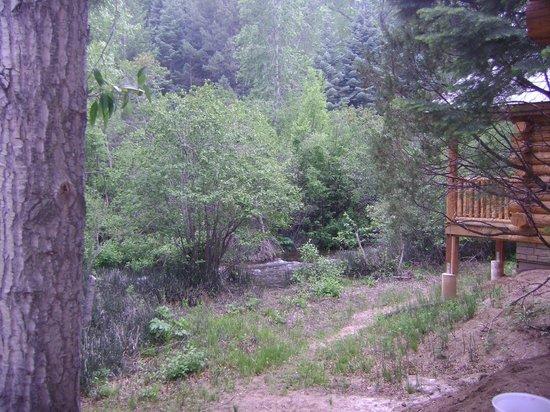 Cruise Inn - Cutty's Hayden Creek Resort: View from deck of cabin, peaceful