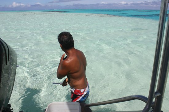 Kia Orana: feeding fish
