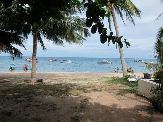 Ananda Villa: 部屋を出たすぐ横(海です)