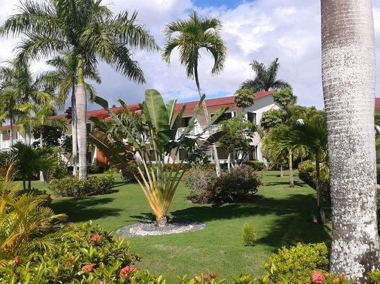 Grand Bahia Principe La Romana: 10