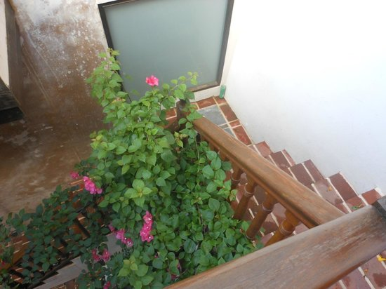 Villa Herencia: Stairs to suite