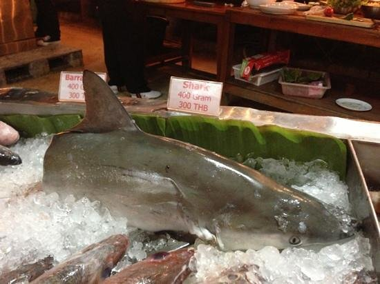 Haad Yao Bayview Resort & Spa: shark being served at the restaurant